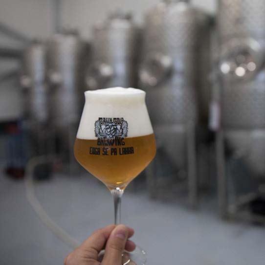 Pivo in pivovarna